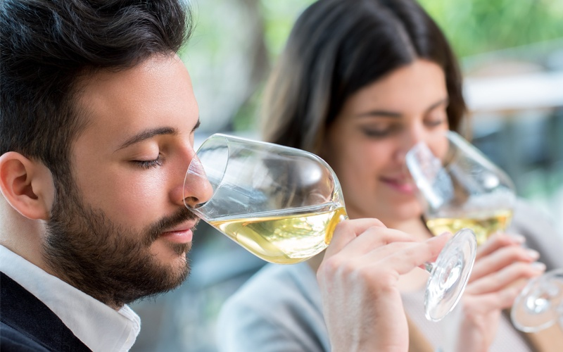 wine tasting tour italy